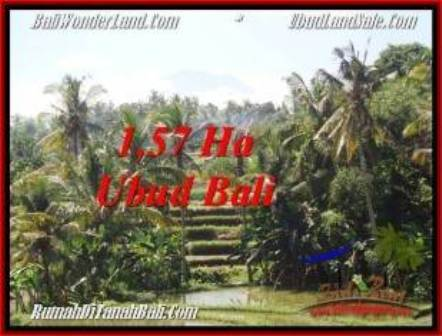 FOR SALE Affordable 15,700 m2 LAND IN UBUD TJUB549