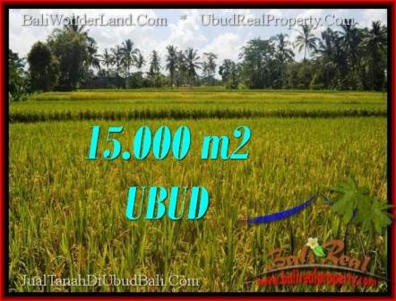Beautiful 15,000 m2 LAND FOR SALE IN Ubud Tegalalang TJUB551