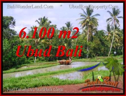 Exotic PROPERTY 6,100 m2 LAND IN Ubud Tegalalang FOR SALE TJUB552