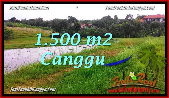 Exotic PROPERTY 1,500 m2 LAND FOR SALE IN Canggu BALI TJCG198