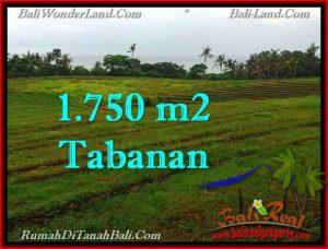 Beautiful PROPERTY 1,750 m2 LAND IN Tabanan Selemadeg FOR SALE TJTB262