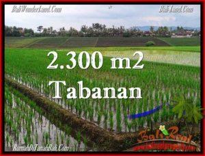 Affordable 2,400 m2 LAND FOR SALE IN TABANAN BALI TJTB263