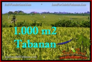 Magnificent TABANAN BALI 1,000 m2 LAND FOR SALE TJTB266