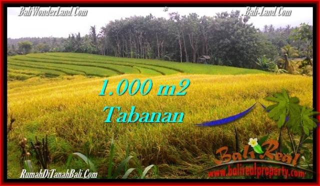 Affordable 1,000 m2 LAND IN TABANAN BALI FOR SALE TJTB273