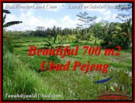 FOR SALE Beautiful PROPERTY LAND IN UBUD TJUB534