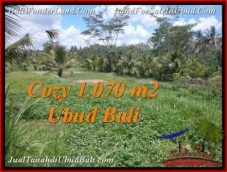 Exotic UBUD BALI 1,070 m2 LAND FOR SALE TJUB536