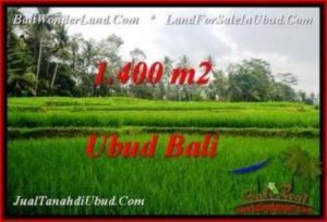 1,400 m2 LAND SALE IN UBUD TJUB539