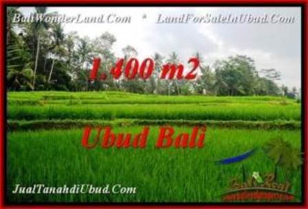 Magnificent PROPERTY LAND IN UBUD FOR SALE TJUB539