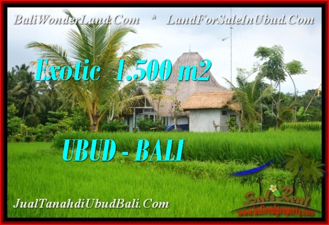 Affordable LAND IN UBUD FOR SALE TJUB541