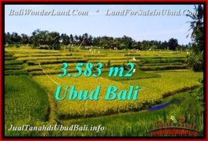 Beautiful PROPERTY 3,583 m2 LAND FOR SALE IN Ubud Pejeng BALI TJUB542