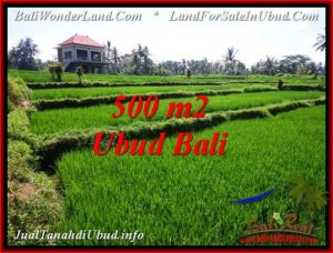 FOR SALE Magnificent PROPERTY LAND IN UBUD TJUB543