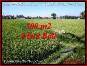 500 m2 LAND FOR SALE IN UBUD BALI TJUB545
