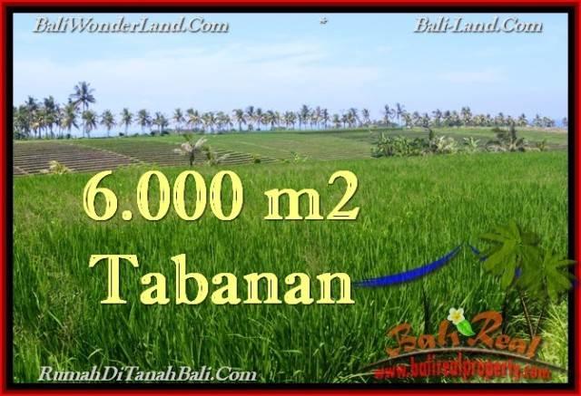 Magnificent 6,000 m2 LAND SALE IN TABANAN BALI TJTB267