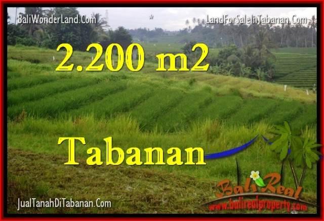 Exotic PROPERTY 2,200 m2 LAND IN Tabanan Selemadeg FOR SALE TJTB269