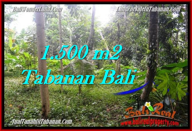 Beautiful PROPERTY Tabanan Penebel 1,500 m2 LAND FOR SALE TJTB279