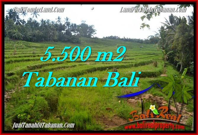 FOR SALE Beautiful PROPERTY LAND IN TABANAN TJTB280