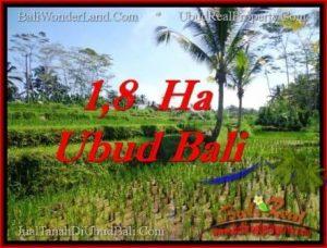 Beautiful 16,000 m2 LAND FOR SALE IN Ubud Payangan TJUB553