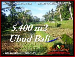 Affordable 5,400 m2 LAND IN UBUD BALI FOR SALE TJUB554