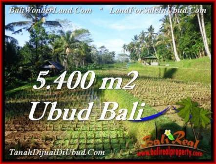 FOR SALE Beautiful PROPERTY LAND IN UBUD TJUB554