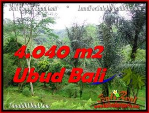 Affordable LAND SALE IN Ubud Tegalalang BALI TJUB555