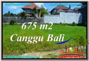 Beautiful PROPERTY 675 m2 LAND SALE IN CANGGU BALI TJCG200