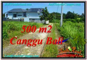 FOR SALE Magnificent PROPERTY LAND IN Canggu Brawa BALI TJCG201