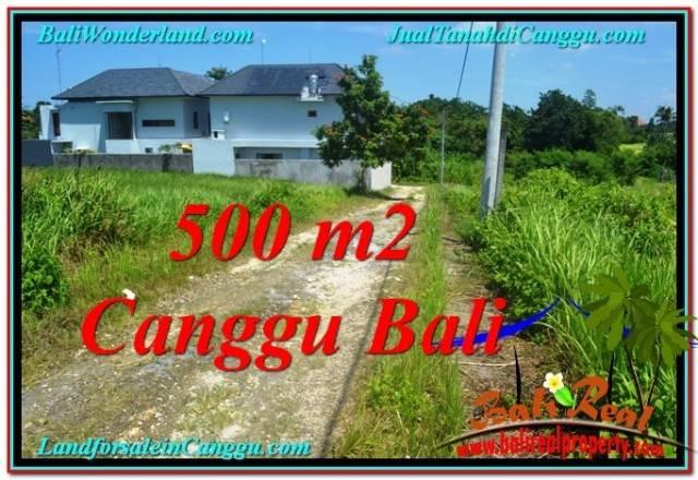FOR SALE Magnificent LAND IN Canggu Brawa BALI TJCG201