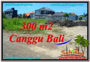 Affordable PROPERTY 300 m2 LAND FOR SALE IN CANGGU BALI TJCG203