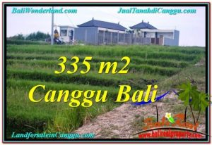 Affordable PROPERTY 335 m2 LAND FOR SALE IN CANGGU BALI TJCG204