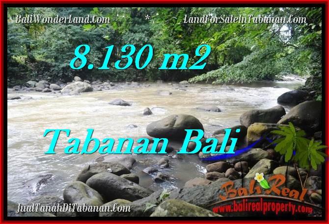 Exotic PROPERTY 8,130 m2 LAND IN Tabanan Selemadeg FOR SALE TJTB285