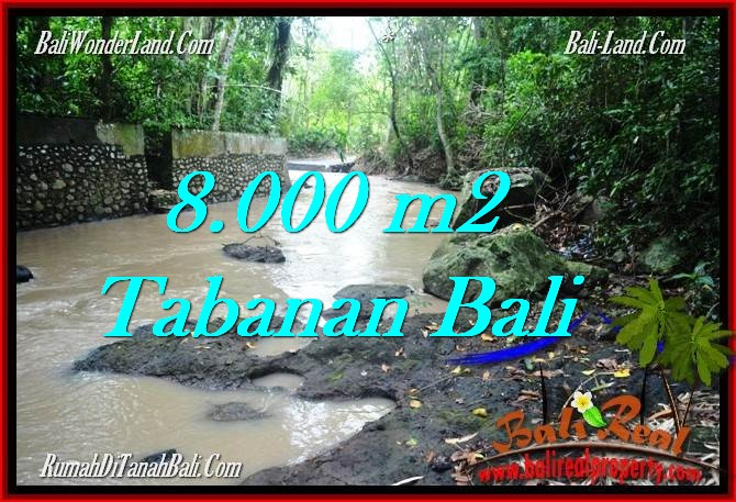 Exotic 8,000 m2 LAND SALE IN TABANAN BALI TJTB287