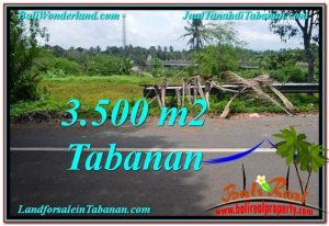 Affordable PROPERTY 3,500 m2 LAND SALE IN TABANAN BALI TJTB298