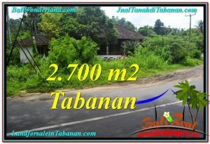 FOR SALE Exotic PROPERTY 2,700 m2 LAND IN TABANAN BALI TJTB299