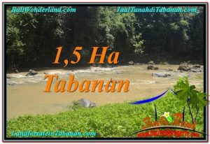 Exotic LAND SALE IN Tabanan Selemadeg BALI TJTB304