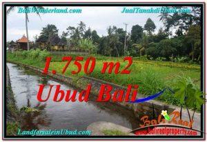 Magnificent 715 m2 LAND SALE IN UBUD BALI TJUB557