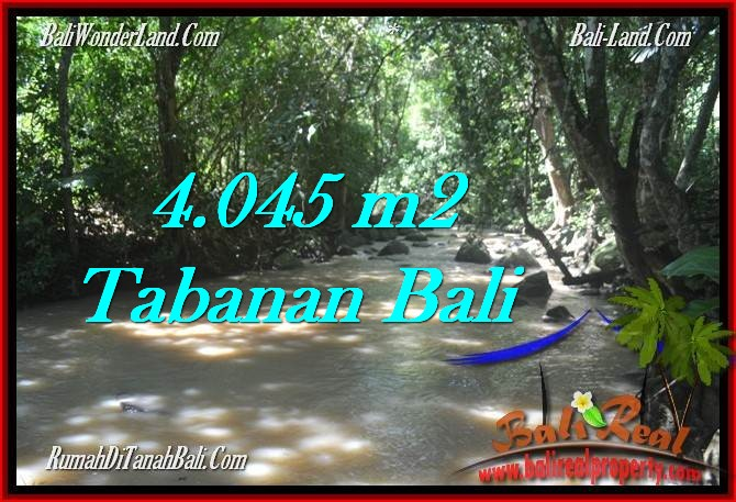 Magnificent PROPERTY 4,045 m2 LAND IN Tabanan Selemadeg FOR SALE TJTB277