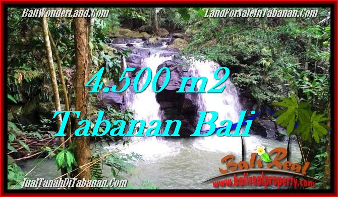 Beautiful PROPERTY 4,500 m2 LAND FOR SALE IN Tabanan Selemadeg TJTB283