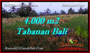 Affordable PROPERTY 4,000 m2 LAND SALE IN TABANAN BALI TJTB288