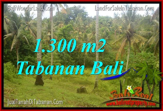 Exotic PROPERTY 1,300 m2 LAND SALE IN Tabanan Selemadeg BALI TJTB314