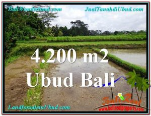 Exotic PROPERTY 4,200 m2 LAND IN Ubud Tampak Siring FOR SALE TJUB561