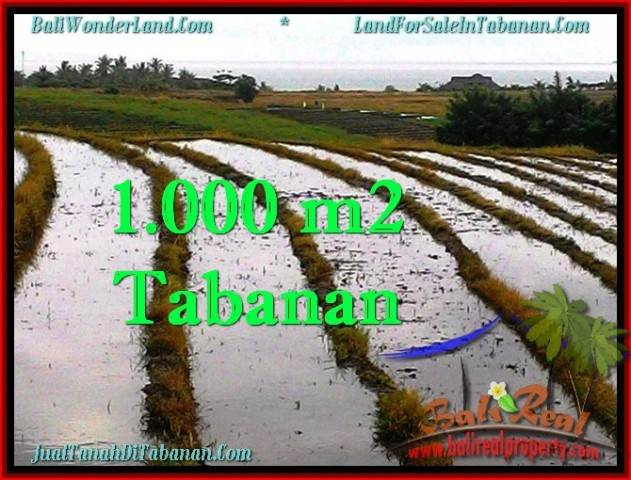 Exotic PROPERTY 1,000 m2 LAND FOR SALE IN Tabanan Selemadeg TJTB261