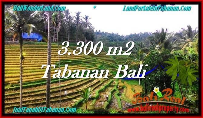 FOR SALE Beautiful PROPERTY 3,300 m2 LAND IN Tabanan Selemadeg TJTB274