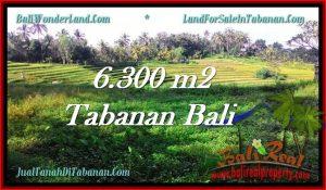 Beautiful PROPERTY 6,300 m2 LAND SALE IN Tabanan Selemadeg TJTB275