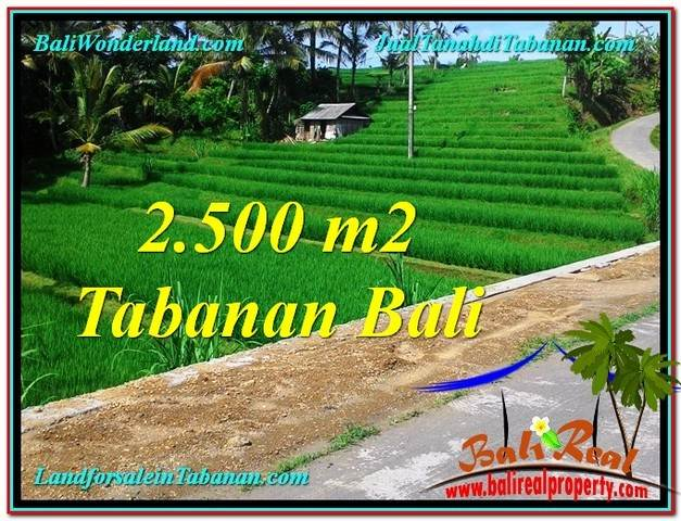 FOR SALE Beautiful 2,500 m2 LAND IN Tabanan Penebel BALI TJTB305