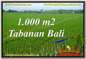 FOR SALE Affordable LAND IN TABANAN BALI TJTB307
