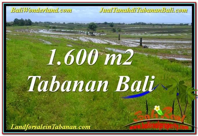Affordable PROPERTY 1,600 m2 LAND SALE IN Tabanan Selemadeg BALI TJTB310