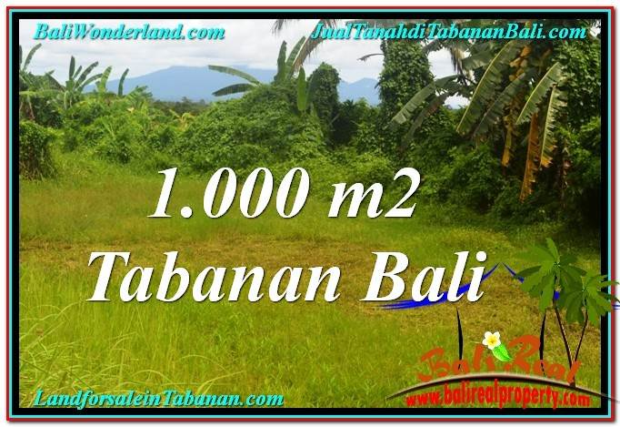 FOR SALE Exotic PROPERTY LAND IN Tabanan Selemadeg TJTB311