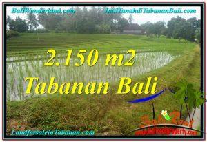 Exotic LAND FOR SALE IN Tabanan Selemadeg TJTB312