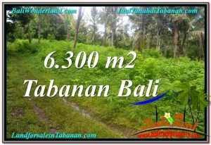6,300 m2 LAND SALE IN TABANAN BALI TJTB313