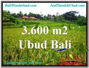 FOR SALE Exotic PROPERTY 3,600 m2 LAND IN UBUD BALI TJUB566